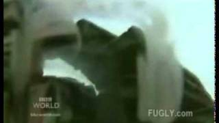 Close footage of American friendly fire airstrike in Iraq