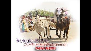 Mattu Vandi Panthayam  RAKELA RACE  NADU MADU  FES