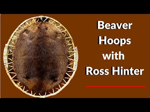 BUSHCRAFT How to Make Beaver Hoop with Ross Hinter
