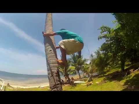 COCONUT TREE CLIMBING IN THE PHILIPPINES GOPR1522