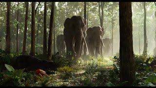 """Show Them Respect"" Clip - Disney's The Jungle Book"