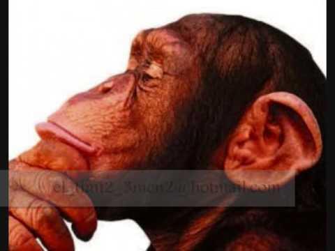 Monkey Black - El Dembow Del Mono - (Nuevo)