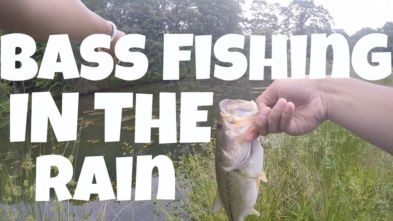 Bass fishing in the rain fishing bite for Bass fishing in the rain