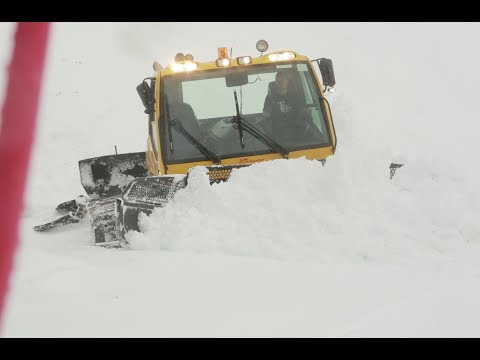 The Storm: Snow Cats