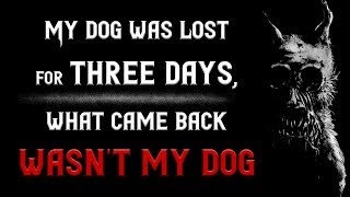 My dog was lost for three days, What came back wasn't my dog | Scary Stories | Nosleep | Creepypasta