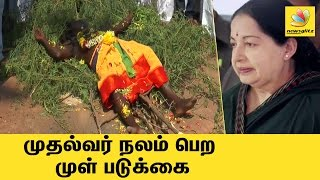 Sivagangai man lies on 'needle bed' for Jayalalitha's recovery | Latest Viral Video