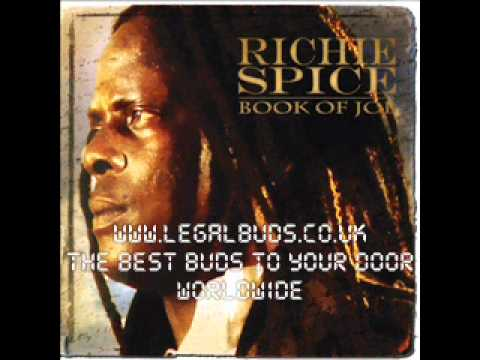 Never Let Us Down - Richie Spice - Book Of Job - 2011 NEW REGGAE ALBUM