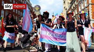 Line 18: The fight between trans and feminists