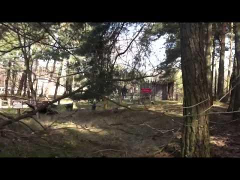 Jongen rent voor zijn leven in Safaripark Beekse Bergen