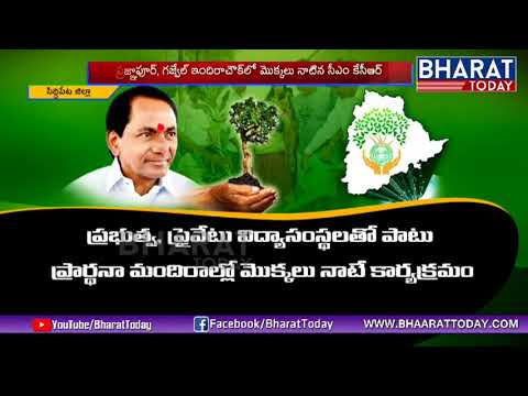 Target 100 Crore Plants | Special Story On Telangana Haritha Haram | Bharat Today