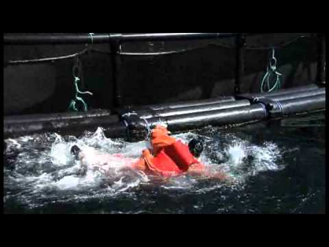 Maritime Training: Man Overboard! Training Video