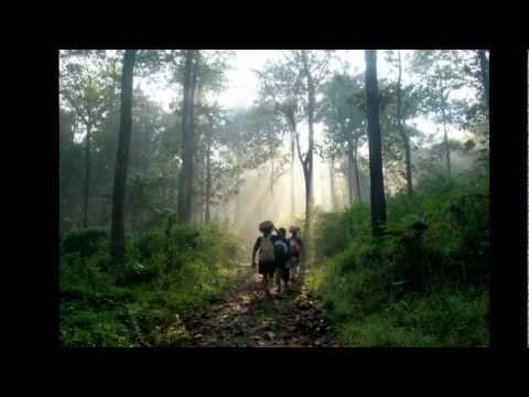 Padigalellam - Swami Ayyappan Padi Pattu - Tamil Devotional Song By VC
