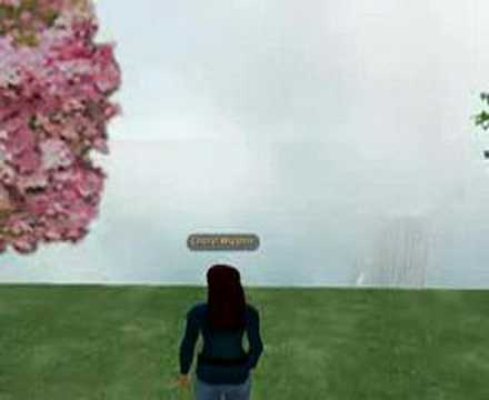 Education in Second Life: Explore the Possibilities