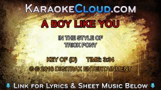 Watch Trick Pony A Boy Like You video