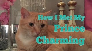 How I Met My Prince Charming