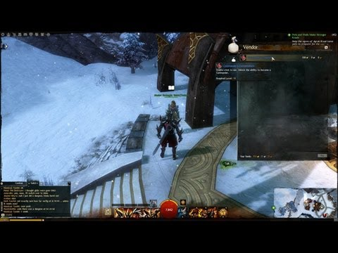 Most Expensive GW2 Item! - Commander's Ability [AA]