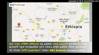 ወ/ሮ ታደሉ ተማም፤ ደምቢዶሎ ላይ ልጃቸው ኃይሉ ኤፍሬም፤ በመንግሥት ታጣቂ ወታደሮች ጥይት የተገደለባቸው እናት ናቸው SBS Amharic (October 3, 2016)