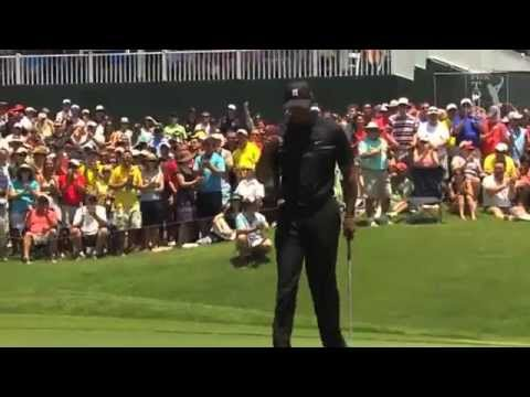 Tiger Woods - Great shots 2013 (With music