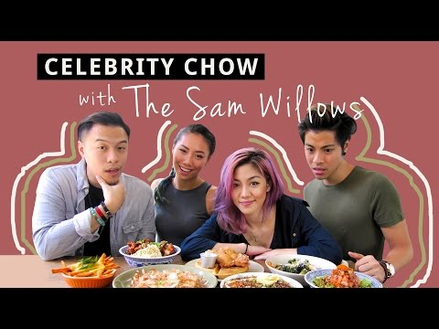 download lagu Celebrity Chow  The Sam Willows gratis
