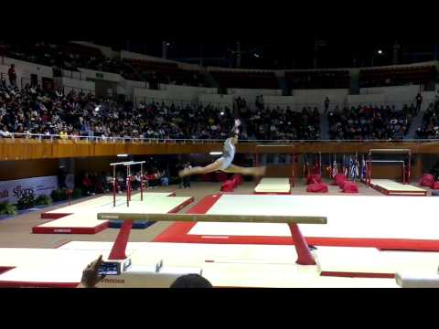 20131116 Gala Gimnastica Mexico D.f. Catalina Ponor Y Tommy Ramos video