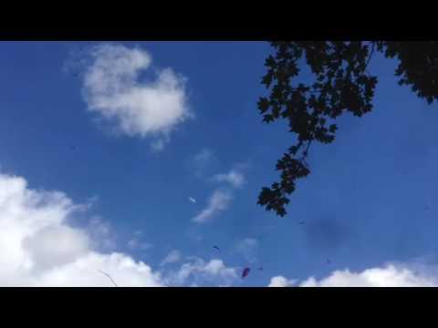 Avión en ceo azul