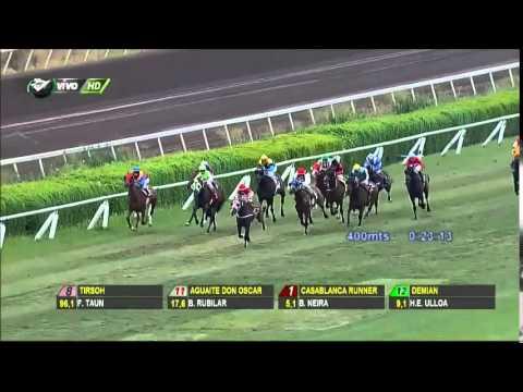 Vidéo de la course PMU PREMIO DRAGUT REIS