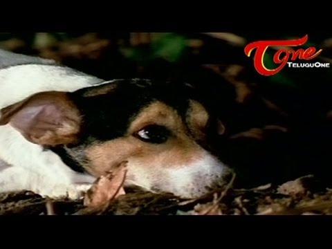 Godavari Comedy Scene | Street Dog Vs Trained Dog | Treasure Hunt