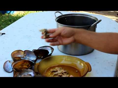 Как приготовить ракушки - видео