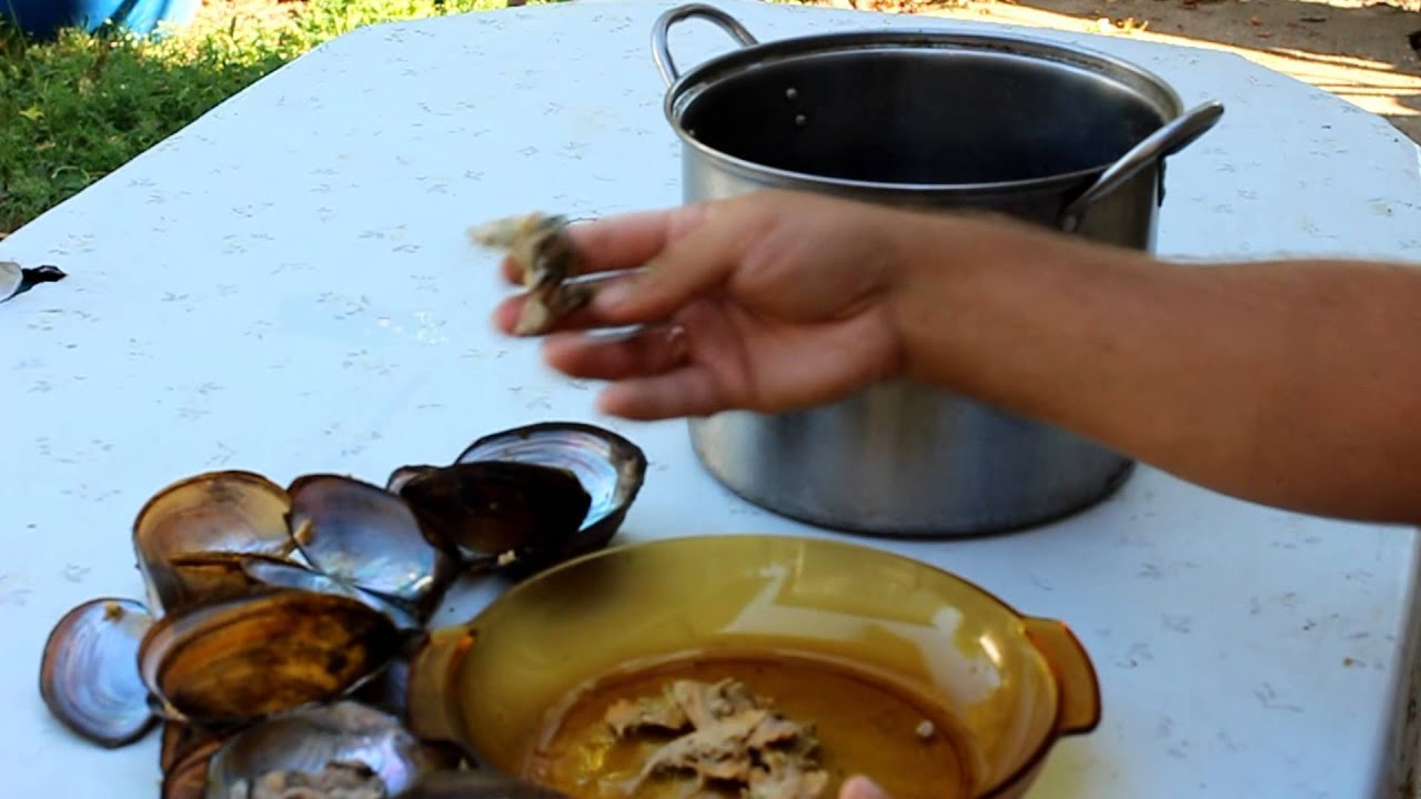 Как приготовить речные ракушки в домашних условиях