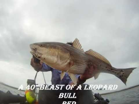 Kayak Fishing Shell Beach Louisiana area in the Outcast Tournament Finality N Da Parish