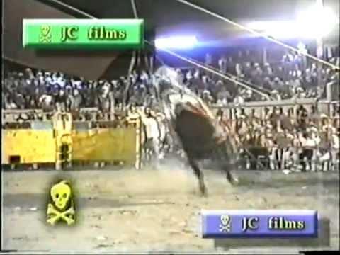 Horror en el rodeo 3