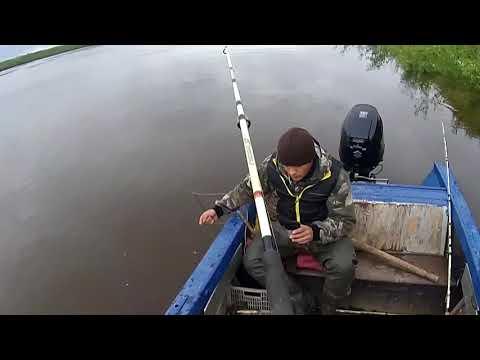 рыбалка май налим