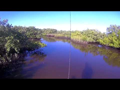 First Florida Cold Front, Skinny Water Redfish In The Mud, Sight Fishing, Short Film