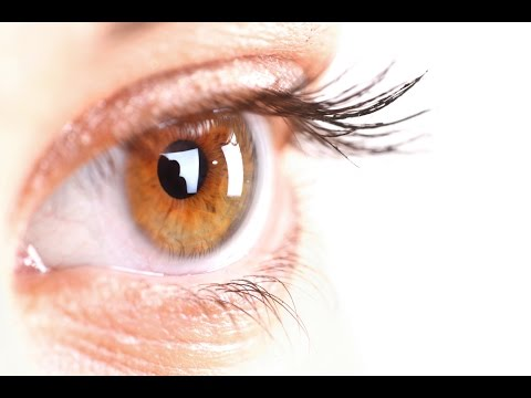Why These Antioxidants are Essential for Eye Health!