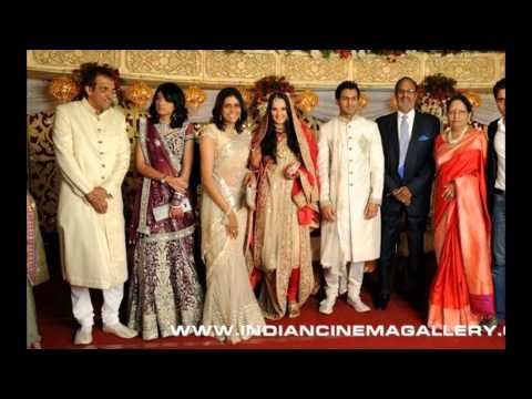 Shoaib Malik And Sania Mirza Wedding Pics And Unseen Pics video
