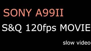 a99ii S&Q 120fps slow video