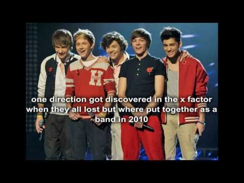 One direction facts 1D 2013