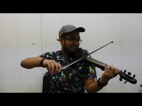 Lady Gaga - Always Remember Us This Way (Violin Cover)