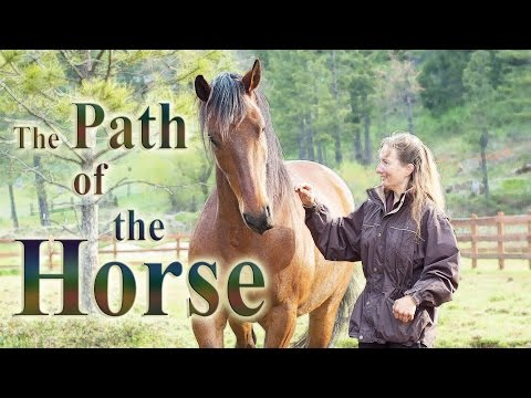 The Path of the Horse - Full Length documentary