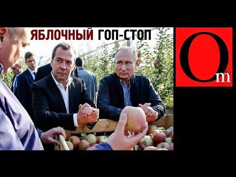 """Яблочный криминалитет России. Путин """"крышует"""" рейдеров"""