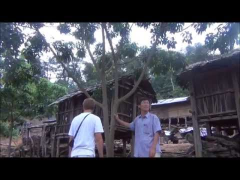 Trek and Homestay with Akha Hill Tribe, Laos