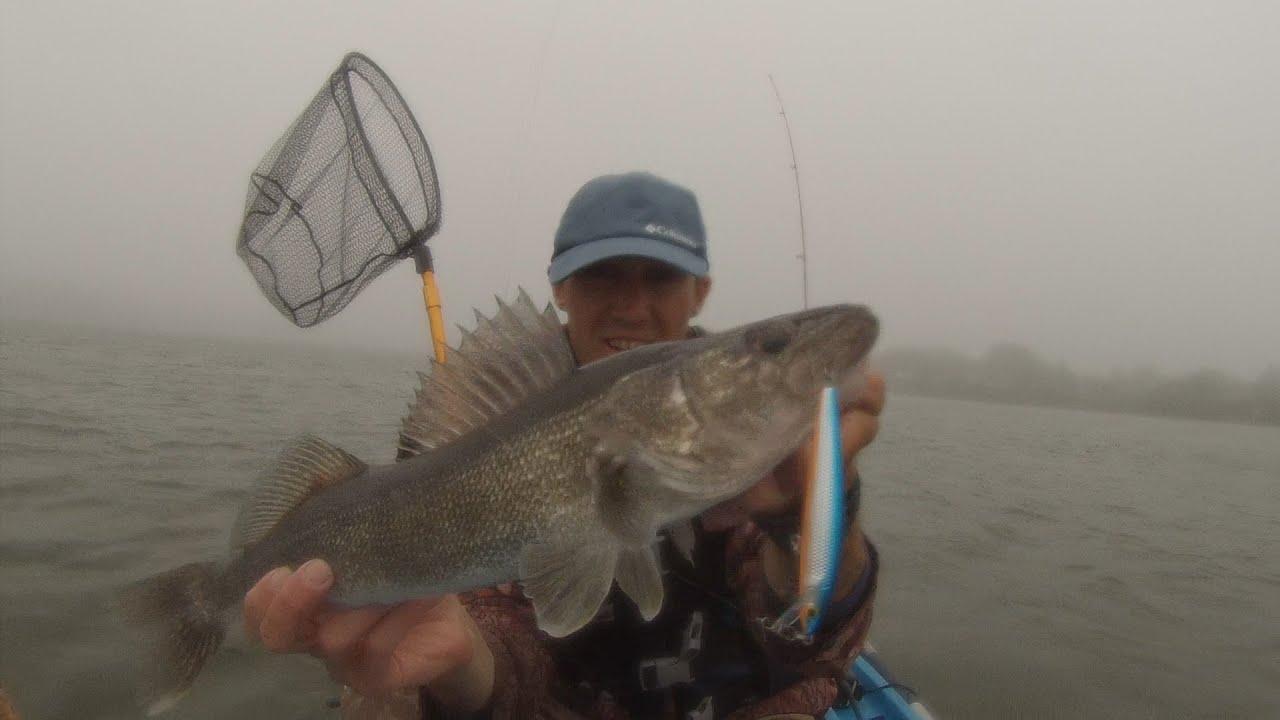 Walleye Fishing Long Island  PB Montauk Walleye