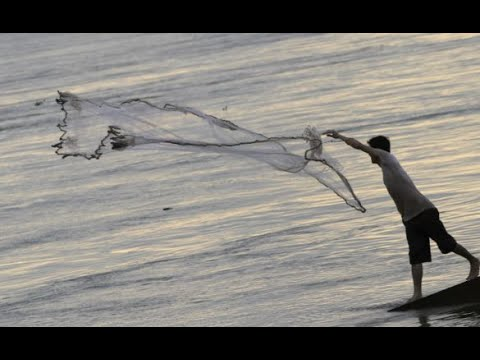 Cast Net Fishing at Takeo Province | Cambodia Fishing in the stream at Takeo Province