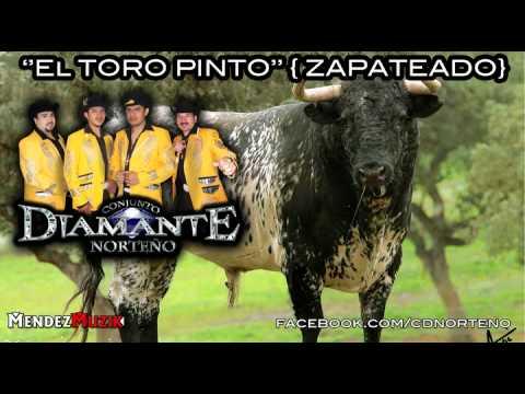 el-toro-pinto-conjunto-diamante-norteno-zapateados-michoacanos.html