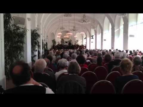 VHHS Orchestra - Vienna