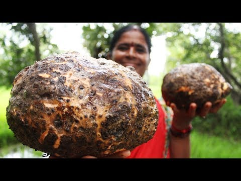 Cooking Yam Curry Recipe || Elephant Foot Curry || Myna Street Food