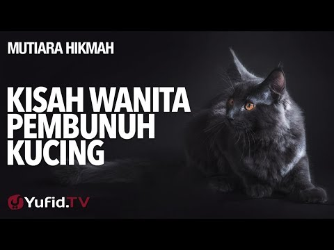 Kisah Wanita Pembunuh Kucing - Ustadz Abdurrahman Thoyib, Lc.