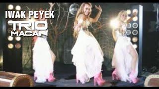 Trio Macan Iwak Peyek Official Music Audio