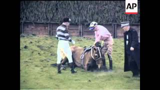 AINTREE - GRAND NATIONAL BY NAME - COLOUR