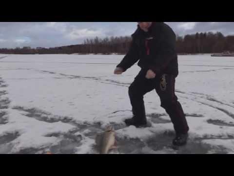 регулярная рыбалка от половинкина